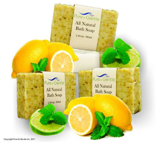 citrus mint lemons limes peppermint soap product image